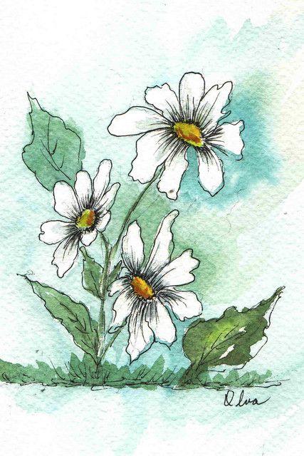 Pen & Ink Watercolor Daisies