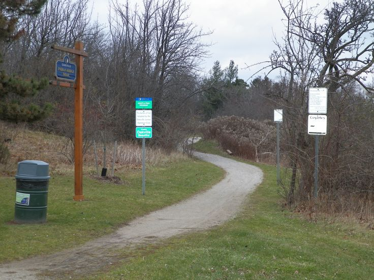 """Trail through """"Indian Ridge Park"""" - one of a number of linear, pocket parks along the Lake Iroquois shoreline."""