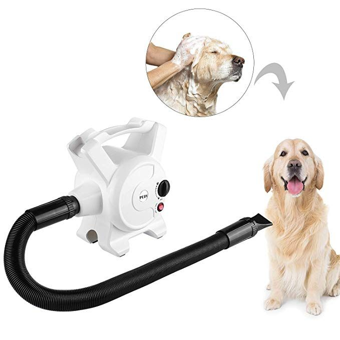Pedy Dog Hair Dryer 3 2 Hp Stepless Adjustable Speed Blow Dryers For Dogs Grooming With Heater 2400w Pet Dryer With 3 Different Nozzles Review With Images Dog Hair Dryer Dog Dryer Dog Hair