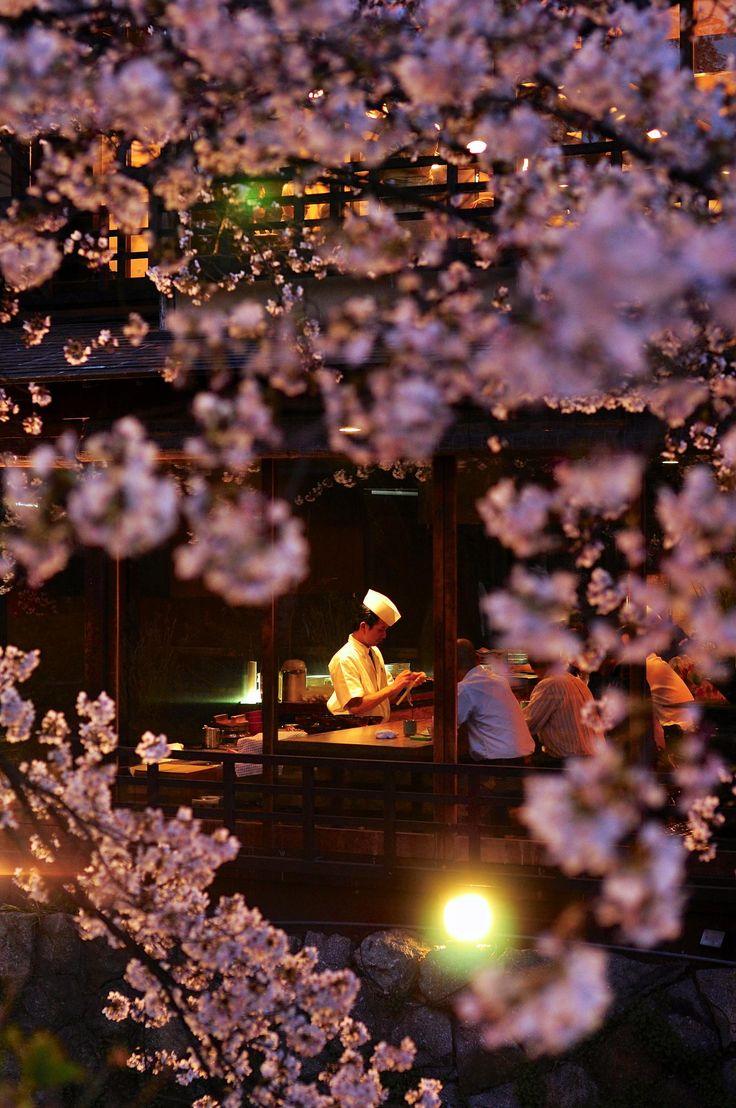 Through Sakura, Japanese Restaurant, Kyoto, Japan, by Chinagarn Kunacheva