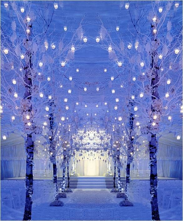 Look at these beautiful trees decorated with lots of small lantern lights. An excellent entrance way!