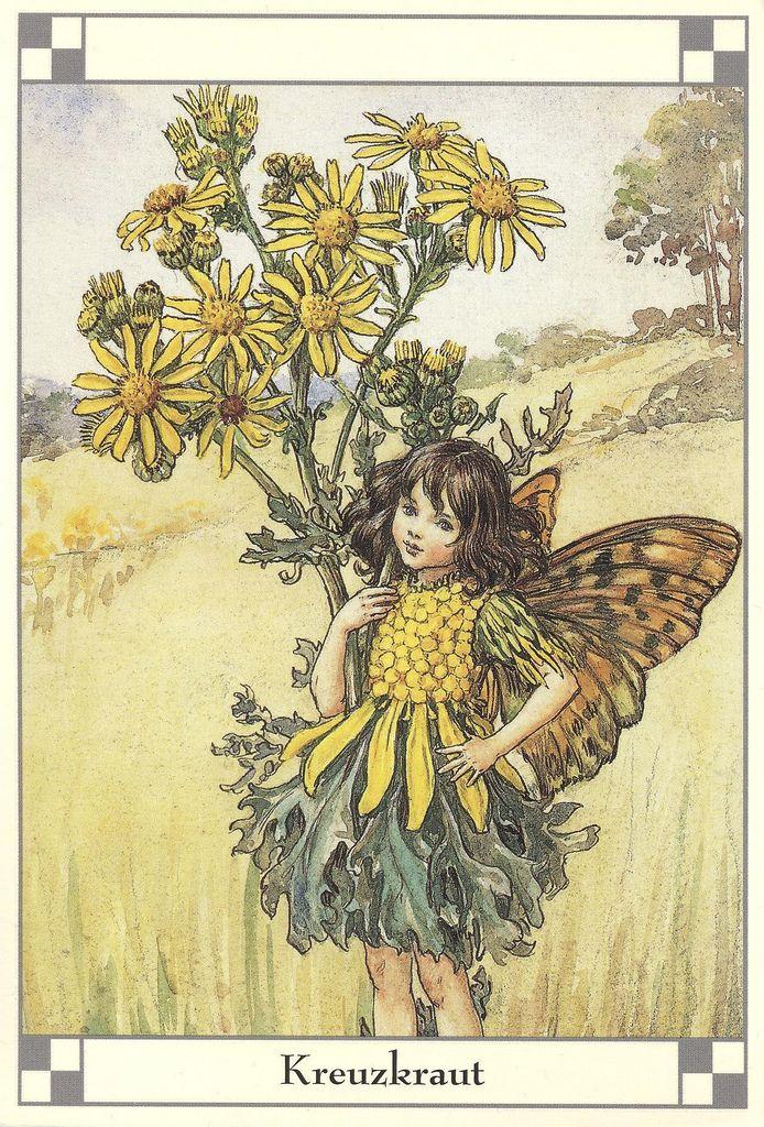 Cicely Mary Barker - The Groundsel (Kreuzkraut) Fairy