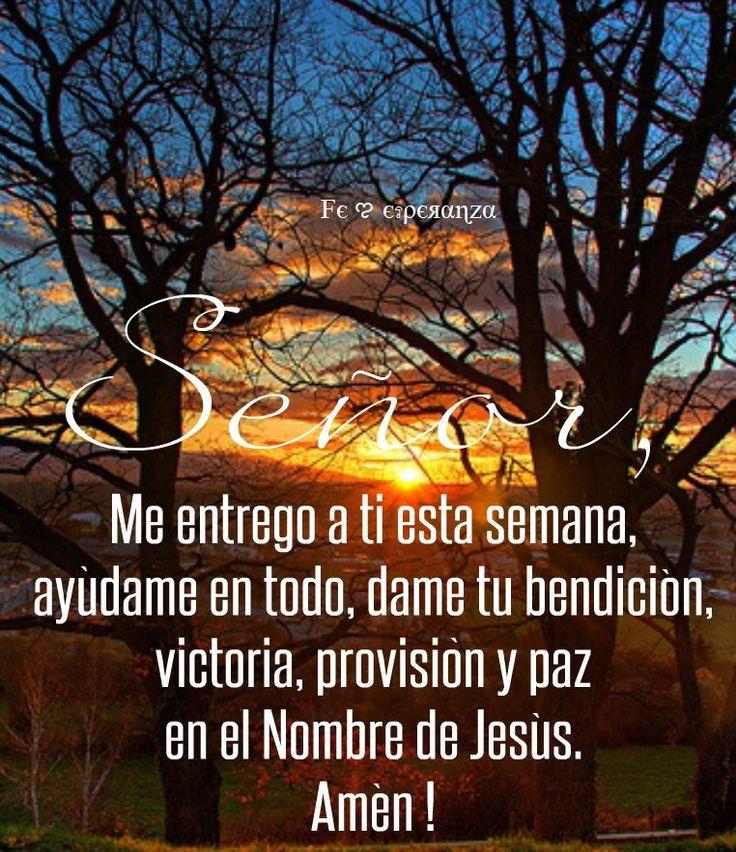 SEÑOR, me entrego a ti esta semana, ayúdame en todo, dame tu bendición, victoria, provisión y paz en el Nombre de Jesús. Amén