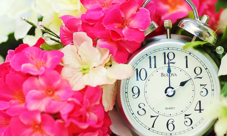 Daylight Saving Time is upon us. It's time to set your clocks forward and wake up even earlier than you usually do. Click here for tips on how to adjust to the change in time! #blog #lifetips #daylightsavingstime
