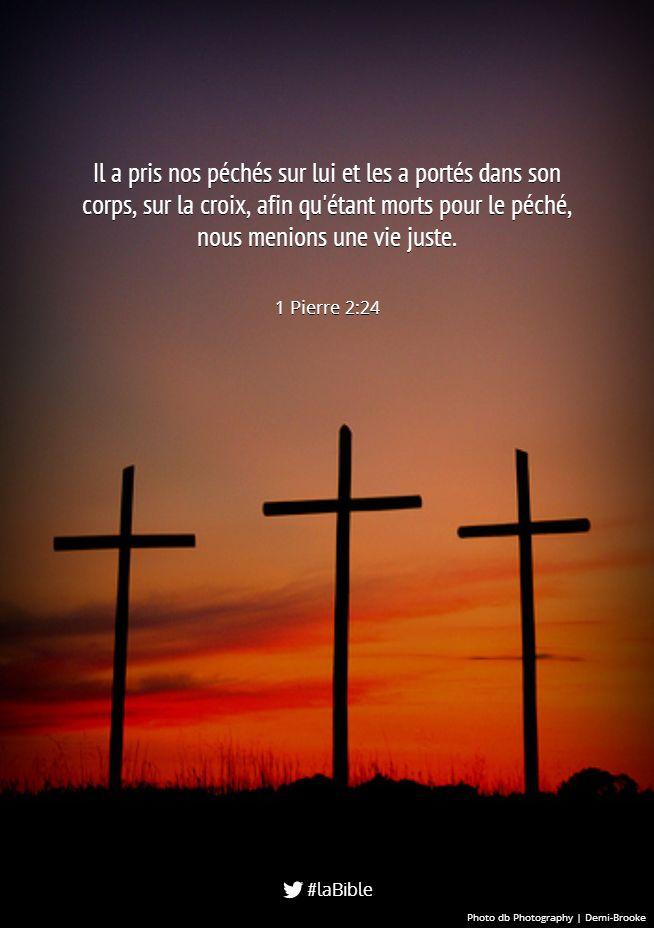 """La Bible - Versets illustrés - 1 Pierre 2:24 - Mort & résurrection de Jésus    """"Le Christ lui-même a souffert pour vous; il vous a laissé un exemple afin que vous suiviez ses traces.[...] Dans son propre corps, il a porté nos péchés sur la croix, afin que nous mourions au péché et que nous vivions d'une vie juste."""""""