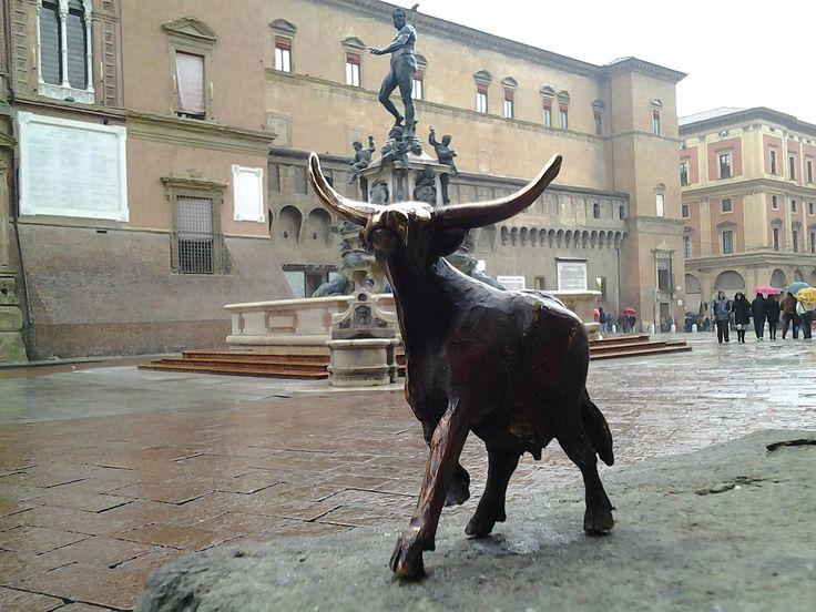 Enrico Franchi- Transumanza- Bologna- Italia
