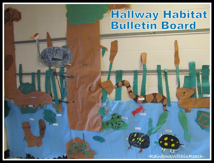 Habitat Bulletin Board (from Bulletin Board RoundUP by RainbowsWithinReach)