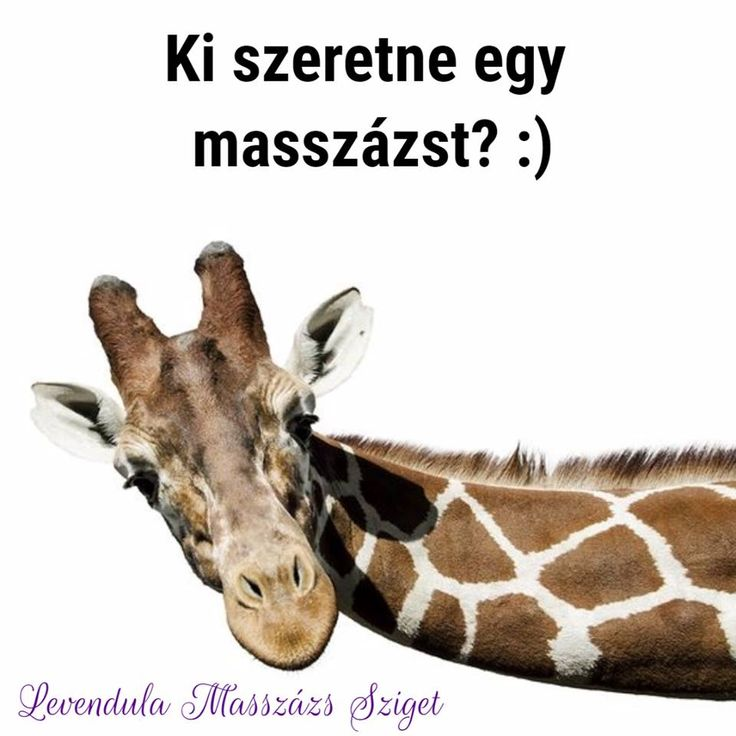 #masszazs #massage #vicc #massagejoke #masszazsvicc