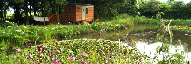 Quaint shepherd's hut glamping beside a beautiful pond in the East Yorkshire countryside.
