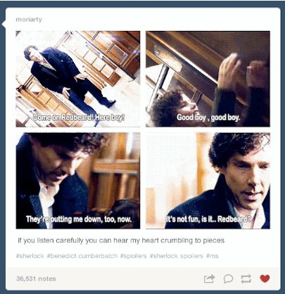 """BuzzFeed-The """"Sherlock"""" Season 3 Finale Caused Tumblr To Self-Destruct Everyone had a lot of feelings about """"His Last Vow."""" SPOILER WARNING."""
