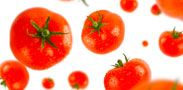 Top diets review for 2014 - Live Well - NHS Choices