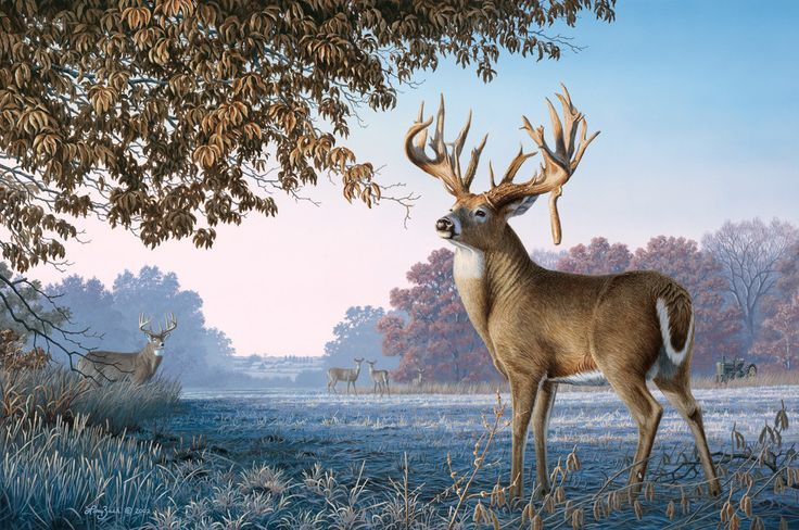 deer painting images | painting of a little place i like to call ...
