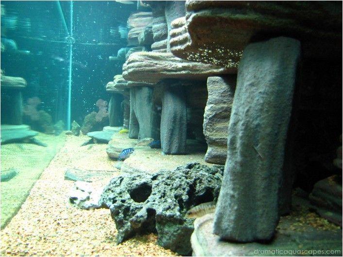 Dramatic AquaScapes - DIY Aquarium Background - Dan and Becky Topp in the Community Spotlight