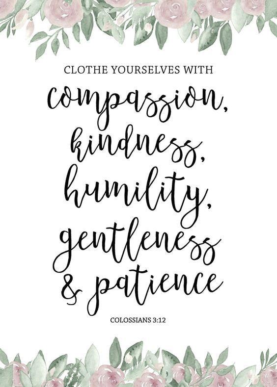 Colossians 3:12                                                                                                                                                                                 More