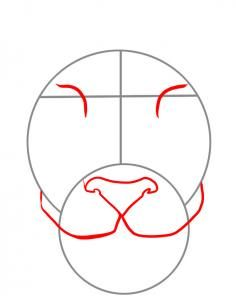 How to Draw a Tiger Face, Step by step