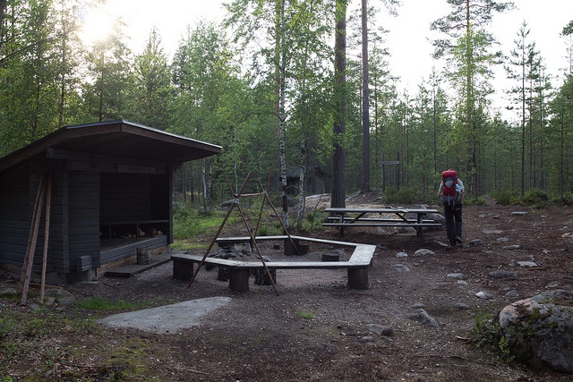 Hiking in Repovesi National Park Finland - HikeVentures