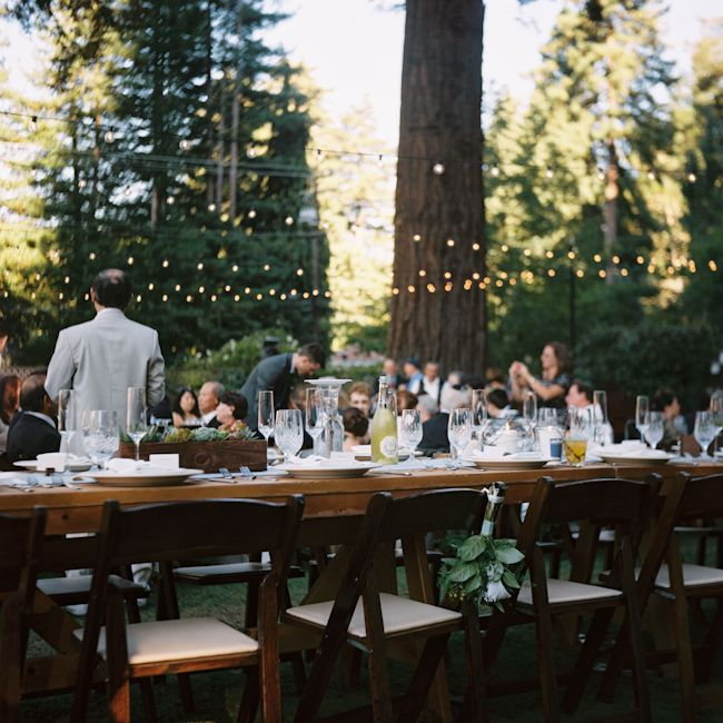 Wedding in the Redwoods (photography by Kate Miss)