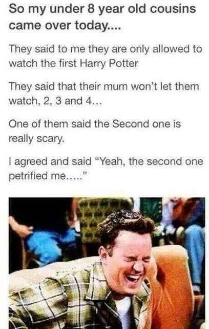 "This joke even adults find funny. | 22 ""Harry Potter"" Puns That Are So Bad They're Good"