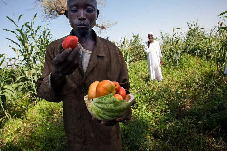 We want to hear from you! CCAFS opens call for blog stories | CCAFS: CGIAR research program on Climate Change, Agriculture and Food Security