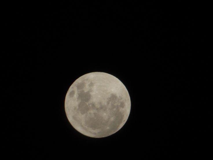 luna, desde el patio de mi casa, sin filtro  #moon
