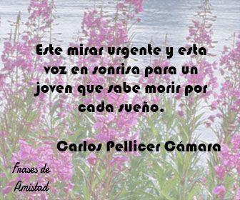 Frases de sonrisa de Carlos Pellicer Cámara