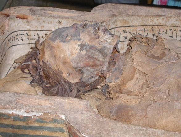 an analysis of mummification in ancient egypt A review on the materials used during the mummification processes in ancient egypt  other analysis studies allowed the elucidation  review on mummification.