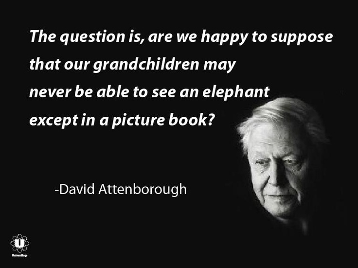 ~ David Attenborough