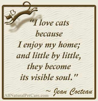 I love cats because I love my home, and little by little they become its visible soul. Jean Cocteau