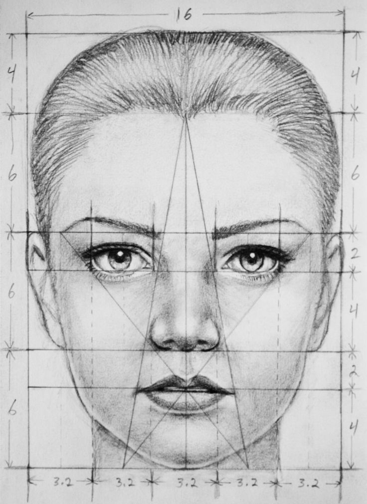 I created this as a reference for myself while practicing profiles and I thought somebody might find it useful. The numbers are the actual measurements in centimeters. Drawn in graphite on sketch p...