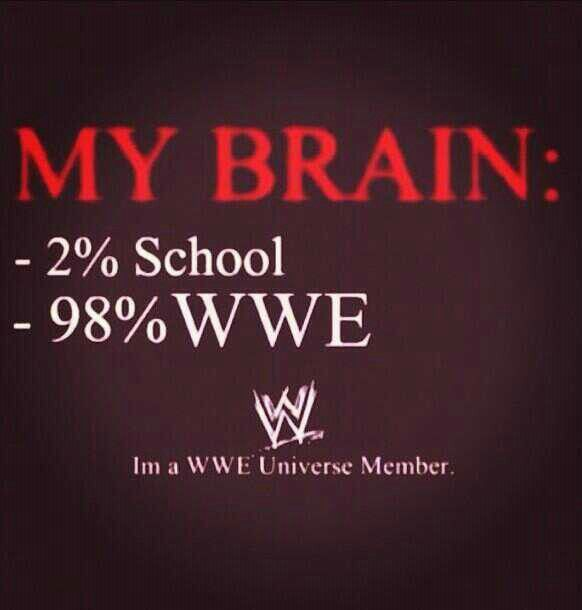 This is the same for me that hate School and I really love WWE. And this fits best for me, and who agree with me that WWE is better then SCHOOL? I hope so, because I hate school so much!