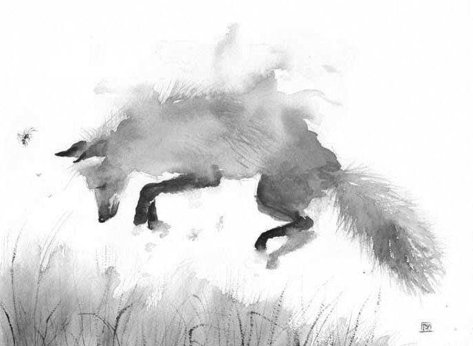 Fox Watercolor Print, Canvas, Poster, Fox Art, Fox ...