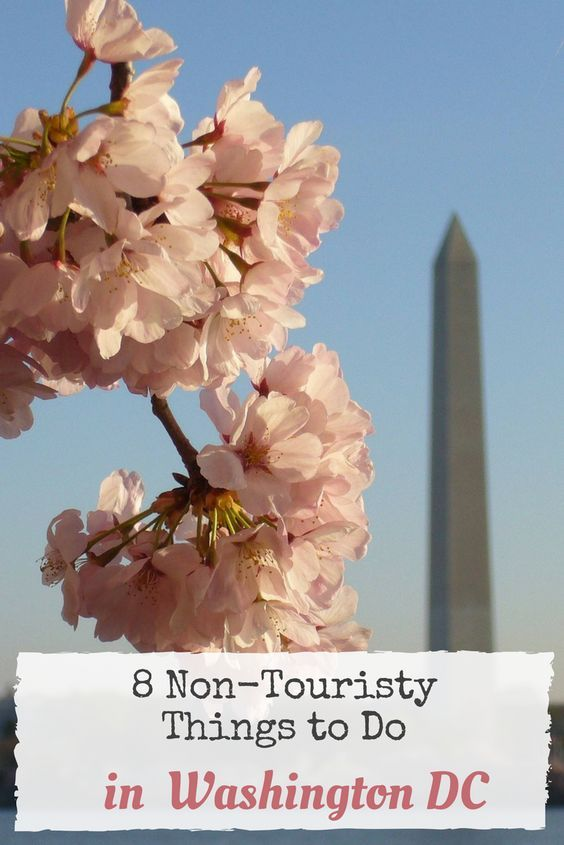 Planning a trip to Washington DC, but you have already seen all the Monuments and Memorials, Museums and other sights in Washington? Here are 8 not-so touristy Things to Do in Washington DC.