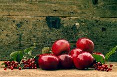 Красные яблоки на деревянном фоне stock photo