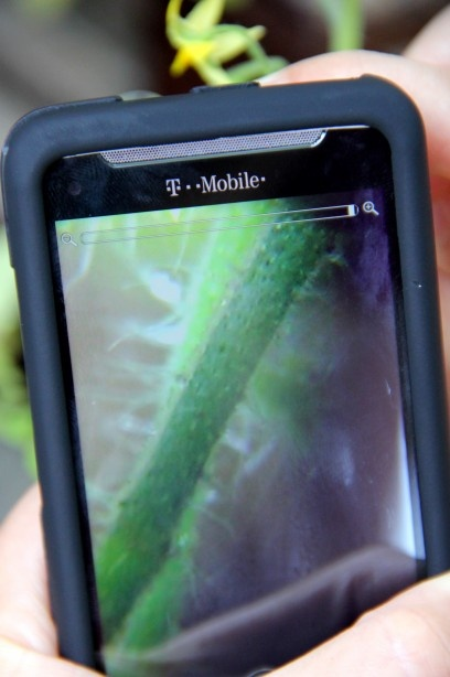 Turn your smart phone into a picture taking microscope.