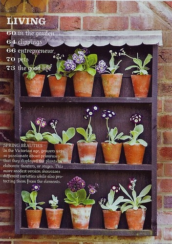 Gardening Tips: love this idea for a small patio space.