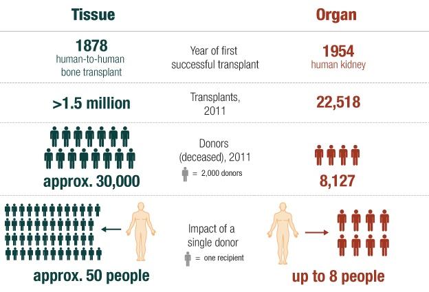 Tissue Donation & Organ Donation (Infographic), NPR
