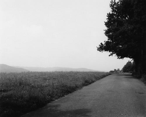 thomas struth | Tumblr