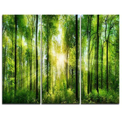 Millwood Pines 'Forest mit Sonnenstrahlen Panorama' 3-teilige Grafik auf eingewickeltem Canvas Set