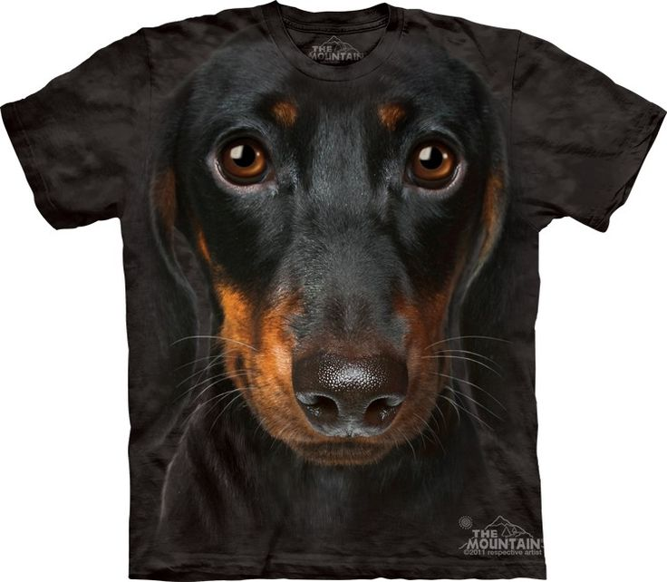 Dachshund face t-shirt - Click image to see hundreds of different animal t-shirts