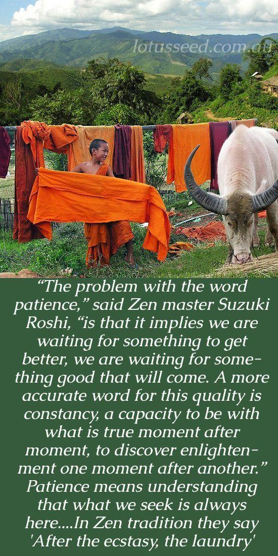 Suzuki Roshi quotes by lotusseed.com.au