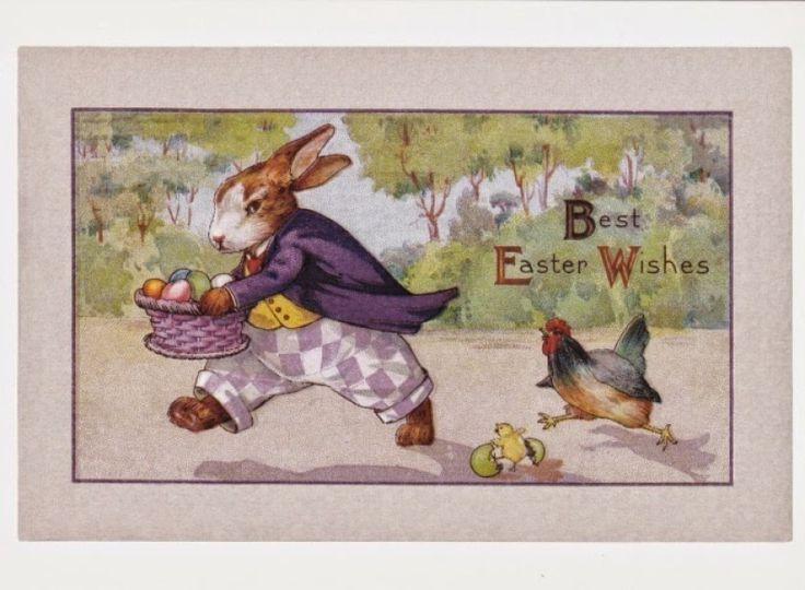 Hare neemt een kippeneieren - Huuto.net