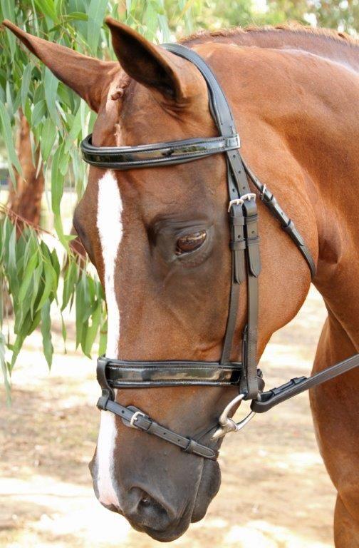 Equiwear Gel Padded Bridle $249.75 Available in Pony, Cob, Full and Warmblood www.equiwear.com.au admin@equiwear.com.au