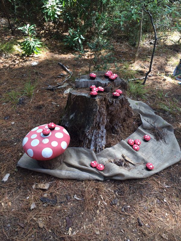 Another view of those toadstools