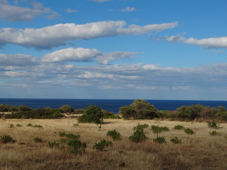 The field in Ogliastra stretch as far as the eye can see .  By P.Vankerrebrouck