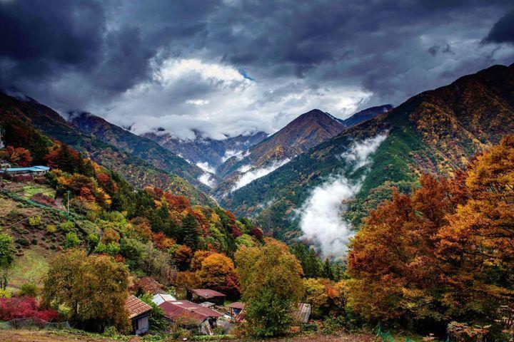 長野県の飯田市に、日本の秘境100選にも選ばれた遠山郷という場所があります。実はここ知る人ぞ知る紅葉の名所なんです。特に「しらびそ高原」は南アルプスの展望台と、「下栗の里」は日本のチロルと呼ばれ、人気のある場所です。
