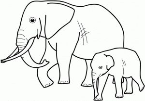 wild-animals-coloring-pages-next-image