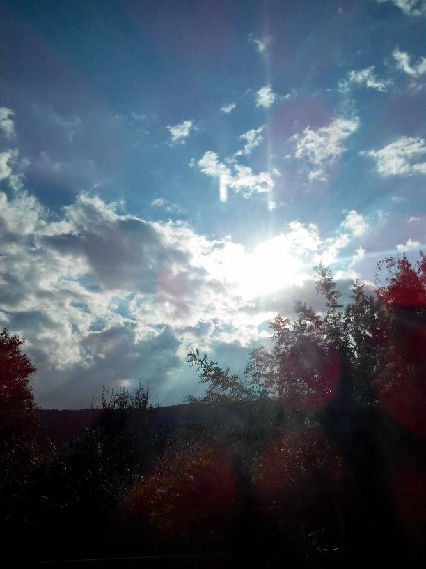#Sun #Light #Paradise