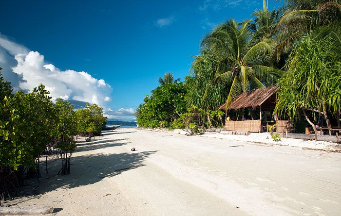 Information, photos, location, prices and reviews for Indip Homestay - traditional Papuan accommodation at Pulau Arborek in West Papua's Raja Ampat islands.