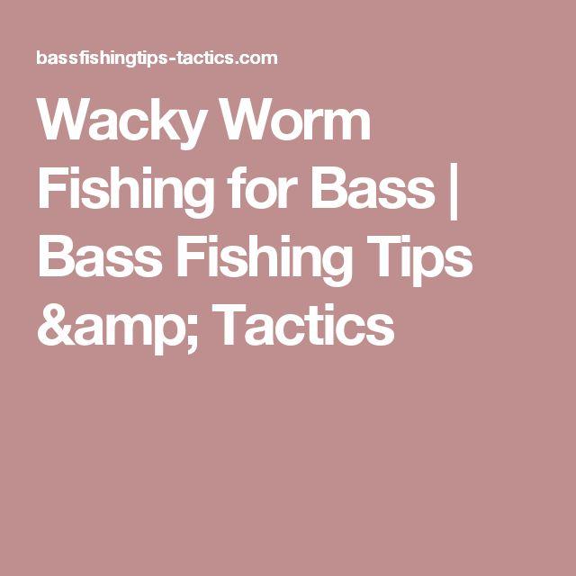 Wacky Worm Fishing for Bass | Bass Fishing Tips & Tactics