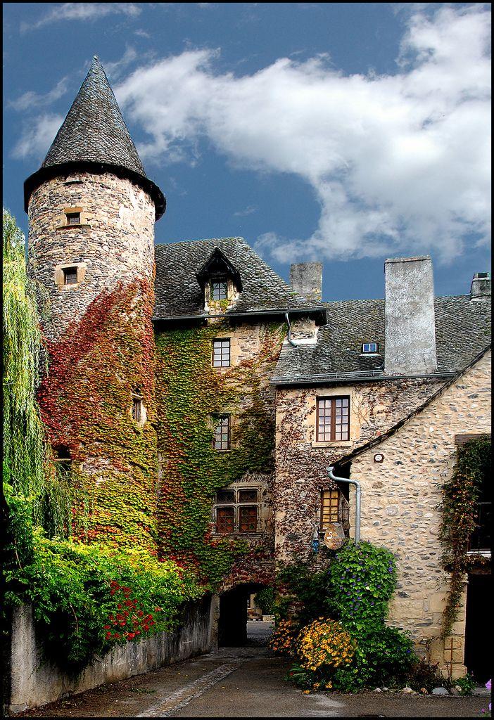 Oh, France, darling, you are tres belle!  Ste Eulalie-d'Olt, France  (via allthingseurope)